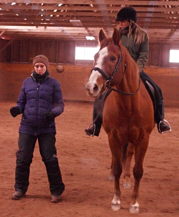 Wearing my Mountain Horse Polar Riding Breeches while teaching a clinic in Connecticut. Rider Melanie Stone on her sweet gelding Chester. Photo taken by Karen Lendvay.