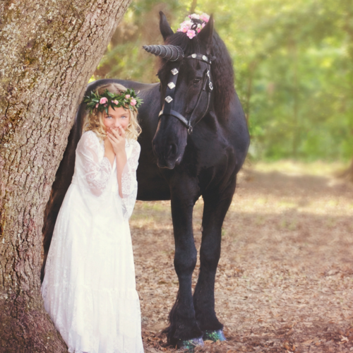 How to transform your horse into a unicorn where to buy a unicorn photo taken by kimberly chason of chason photos amp art of aubrey with douwe the solutioingenieria Choice Image