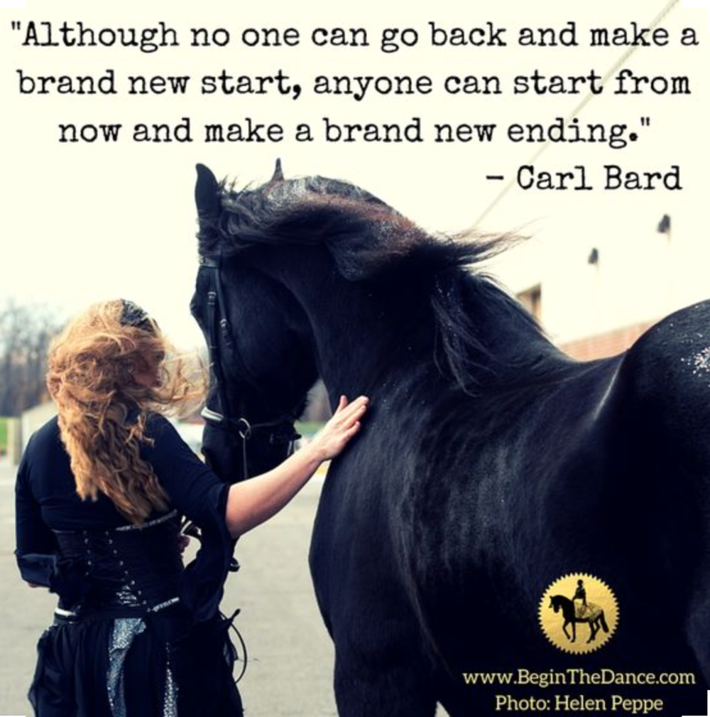 Connect with your horse on a deeper level.  click here
