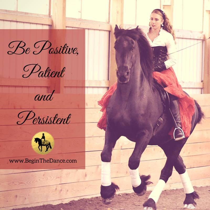 Learn how to ride your horse bridleless.  click here