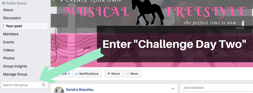 Create a Dressage Musical Freestyle Facebook Group Challenge Day Two.png