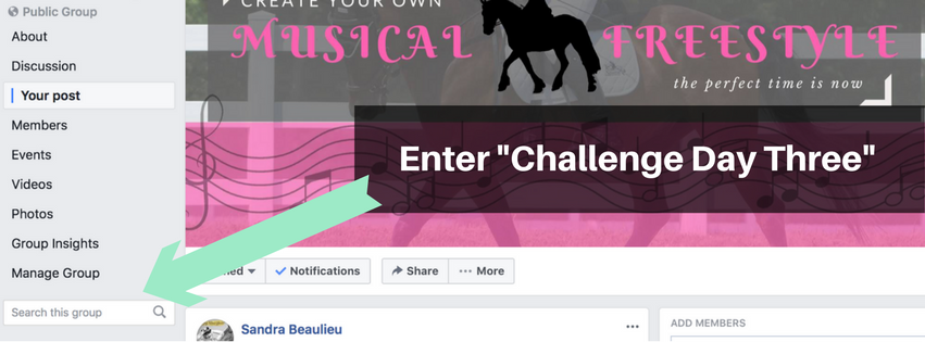 Create a Dressage Musical Freestyle Facebook Group Challenge Day Three.png