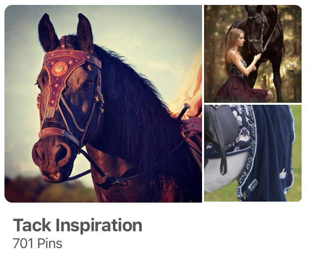 Tack Inspiration for Horses on Pinterest