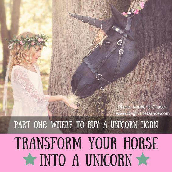 Tranform Horse into Unicorn.jpg