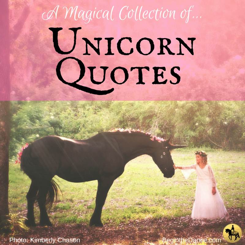 Magical Quotes About Unicorns And Fairytales With Beautiful Impressive Magical Quotes