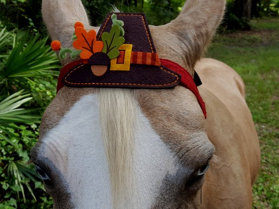 Pilgrim hat for horse browband etsy.jpg