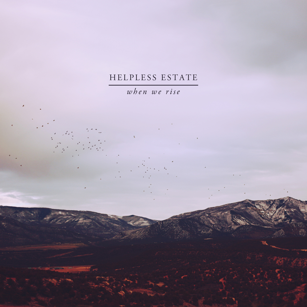 Helpless Estate, When We Rise, 2013.