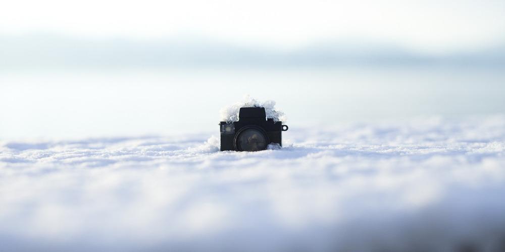 Snowed In? -Maria Cristina Travaglio