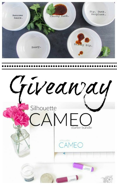 Sultry and Sacuy One of Kind DIY Dip Cups + Silhouette Cameo II Giveaway - Pocketful of Posies