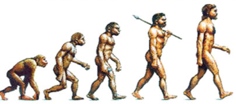 Evolution.png