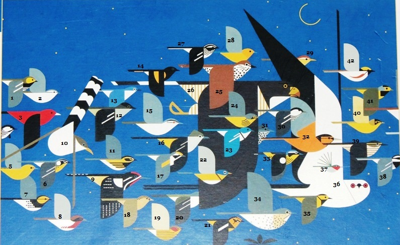 Mystery of the Missing Migrants Charley Harper