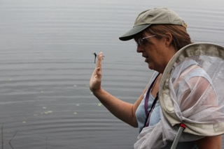 Pam Hunt holds up a newly caught dragonfly for inspection.