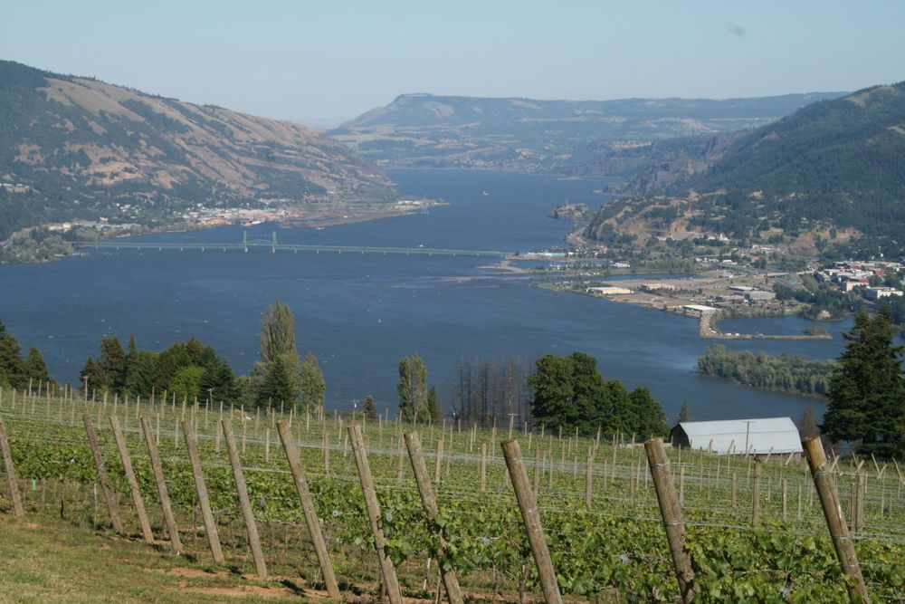 rhone-river-valley.jpg