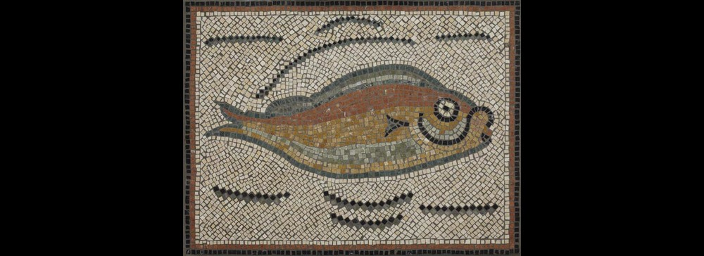 Roman Tunisian Fish