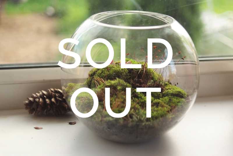 mossarium sold out.jpg