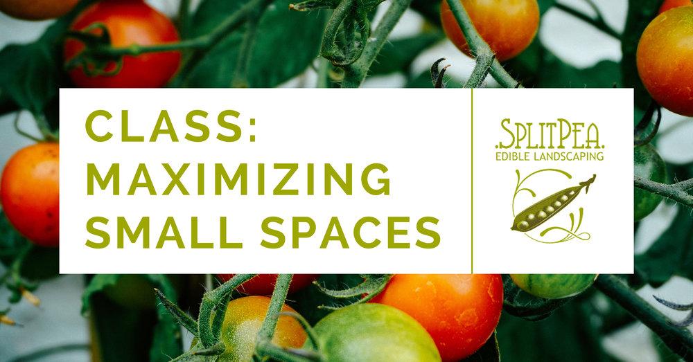 maximizing small spaces.jpg