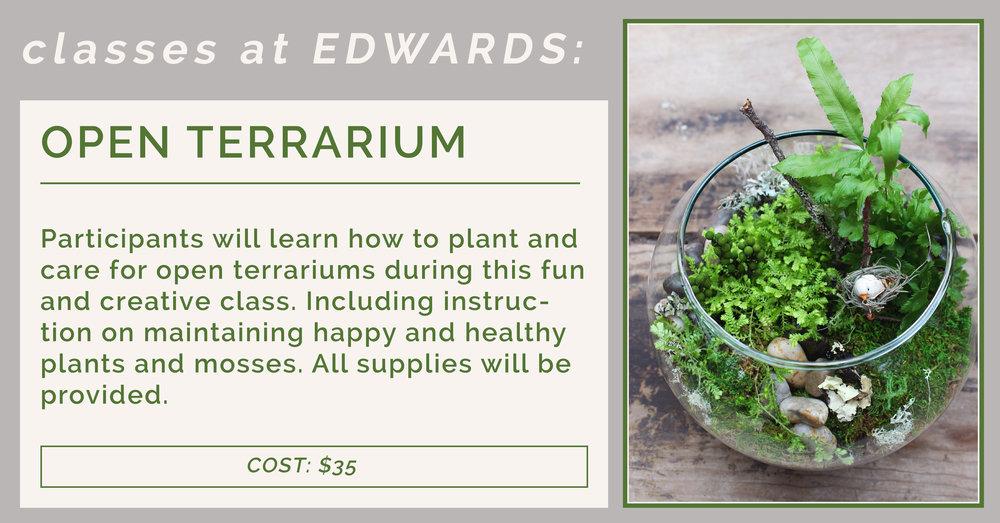 Class Open Terrarium Edwards Greenhouse