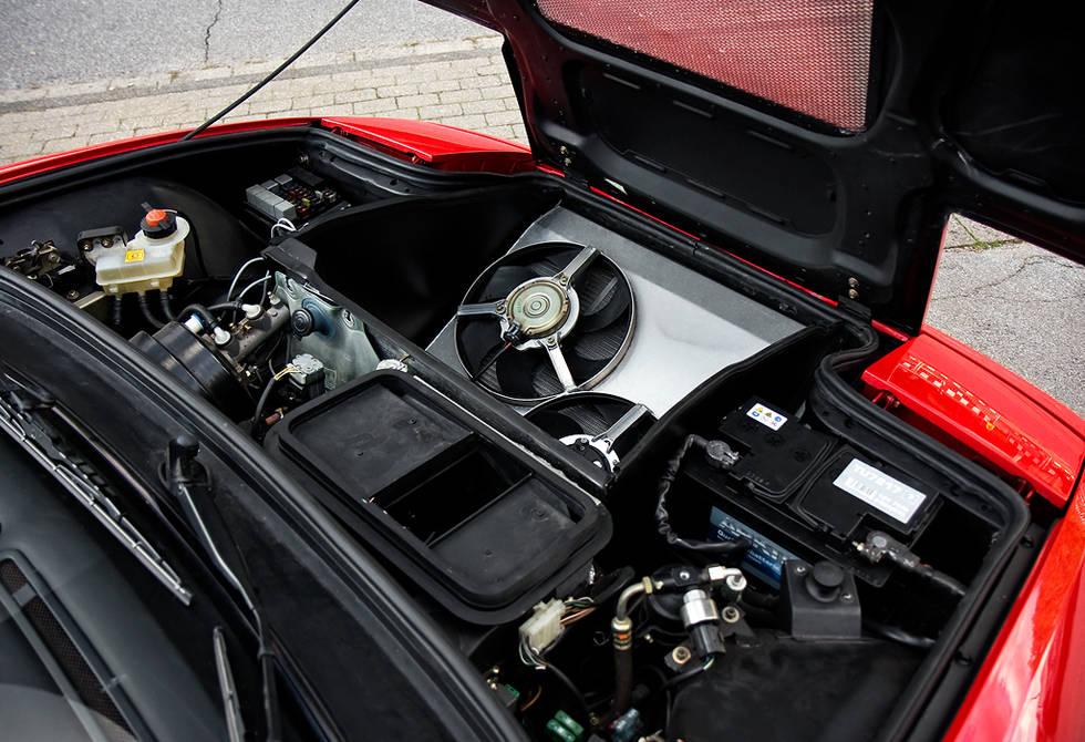 Ferrari-Enzo-Mule-9.jpg