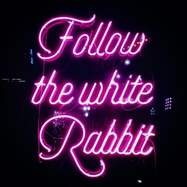 followTheWhiteRabbit-neon02.jpg