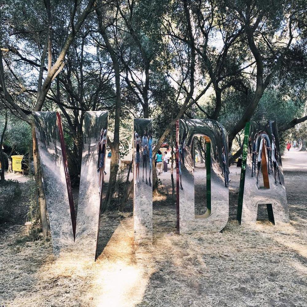 festivales-VIDA02.jpg