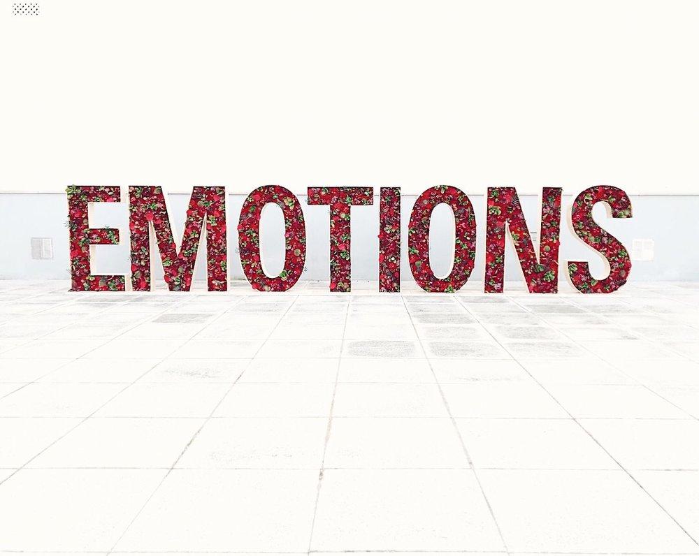emotions-flores-letras-27lletres.jpeg