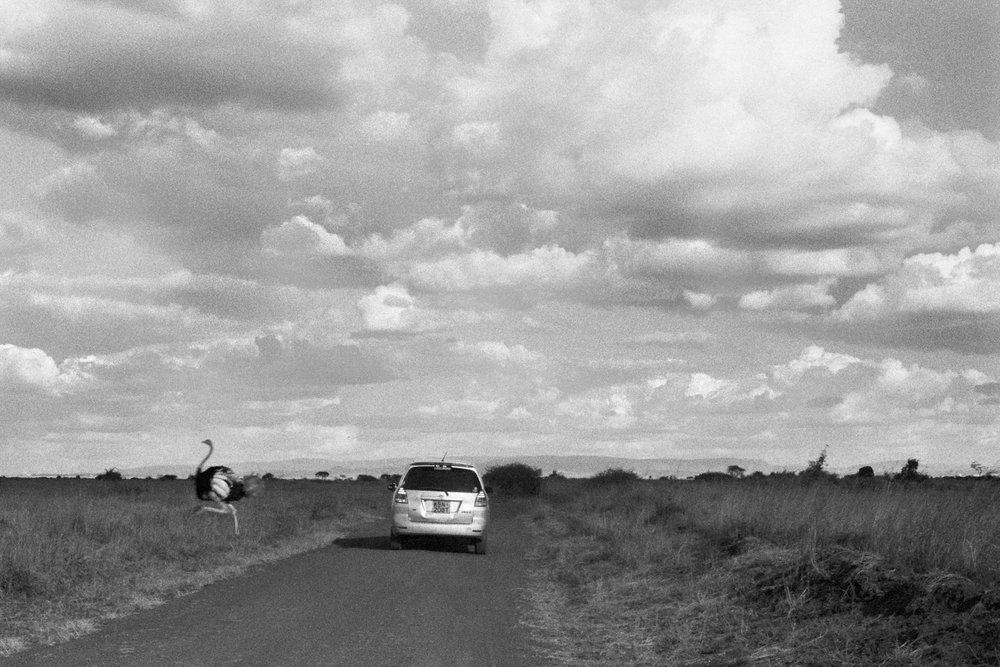Kenya-4.jpg