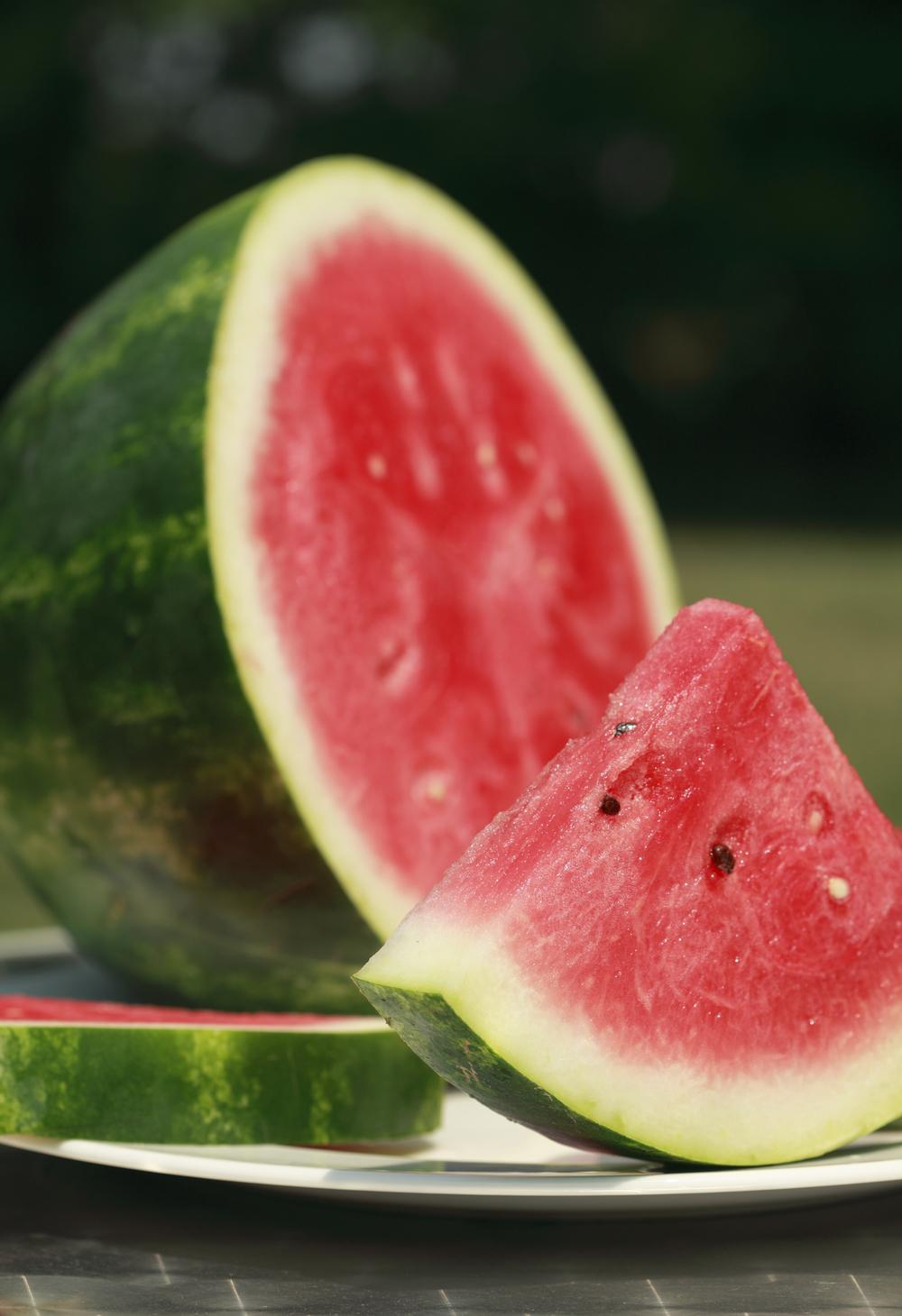 Photography Lane Studios Food -Watermelon.jpg