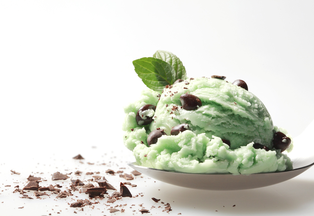 Mint Chocolate Ice Cream 3.jpg