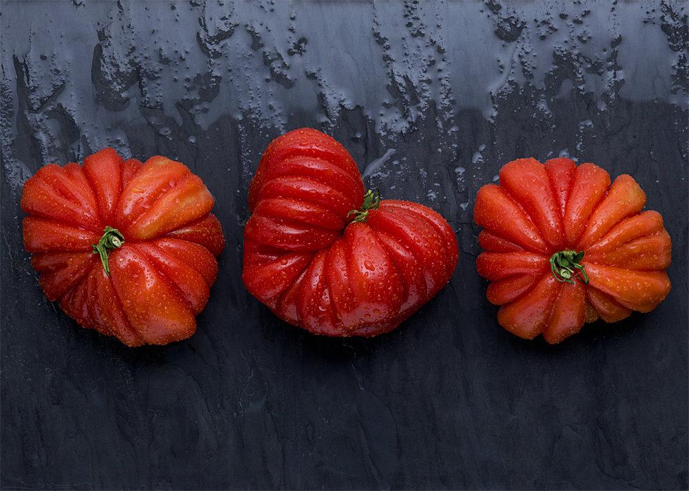 Tomatoes -1 csm.jpg
