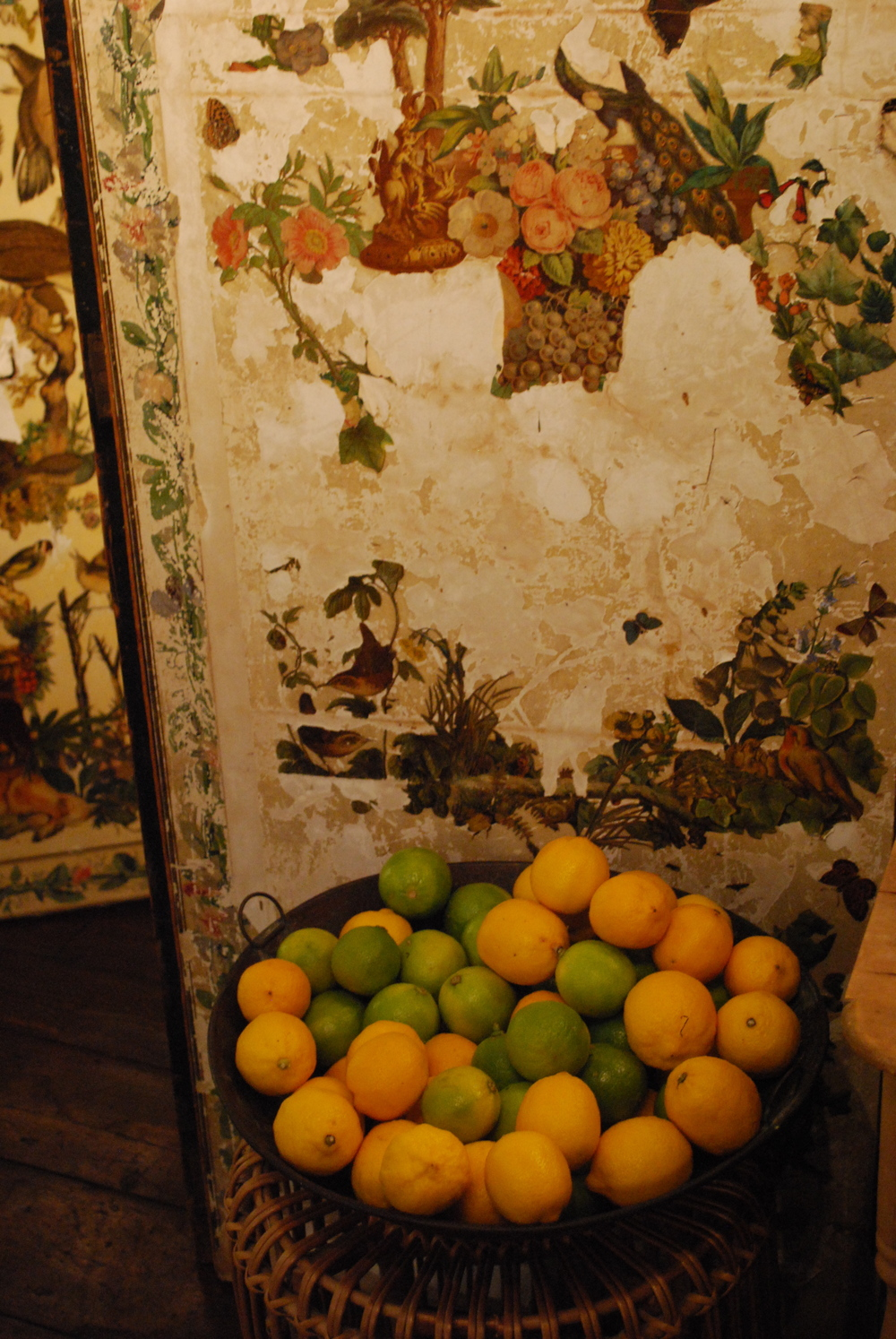 room with lemons and limes LR.jpg