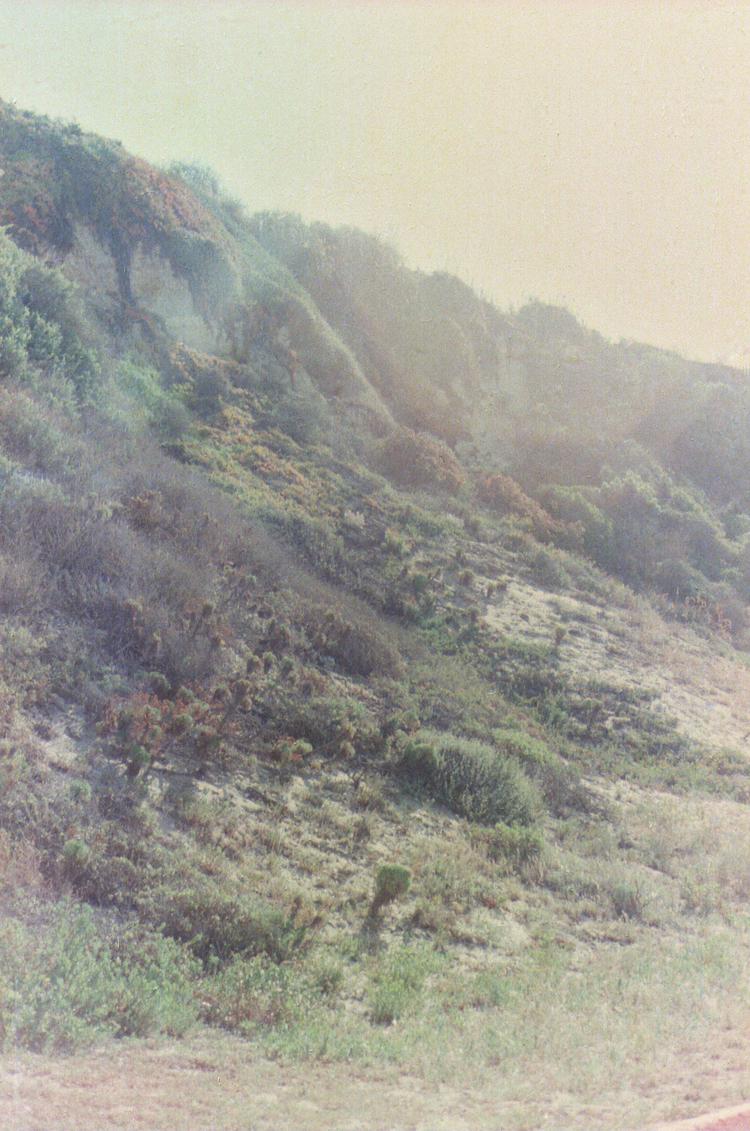 LA Mountainside