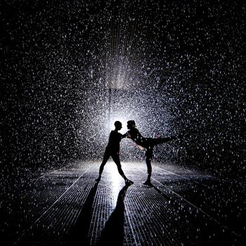 rainroom1.jpg