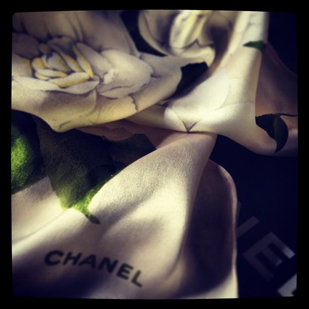 Chanel Gardenia Foulard