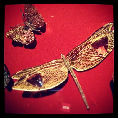 gold-dragonfly.jpg