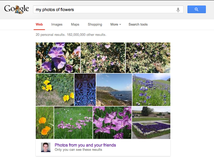 2013-05-23-my+photos+of+flowers.png