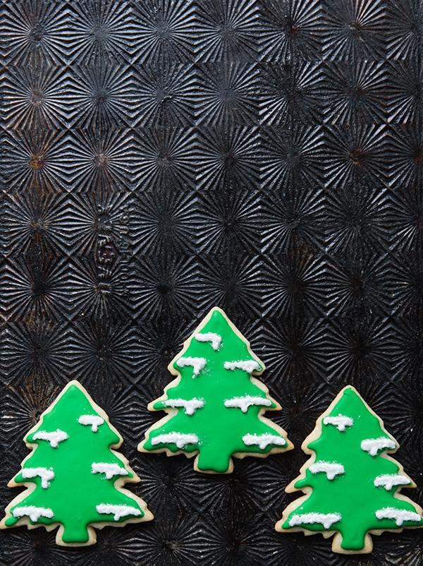 2018_0118_erinscottphotography_holidaycookiesbook-8229.jpg
