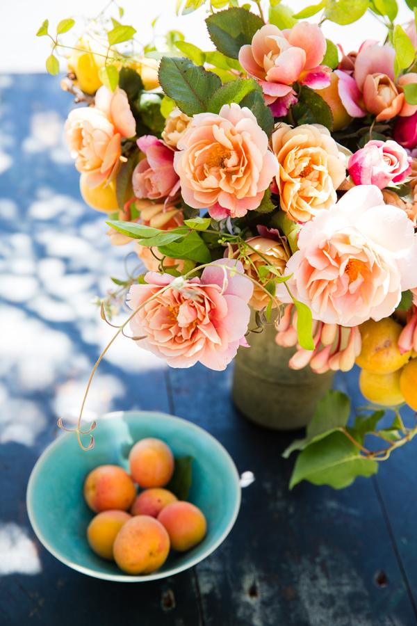 Lush_RosesApricots_7326.jpg