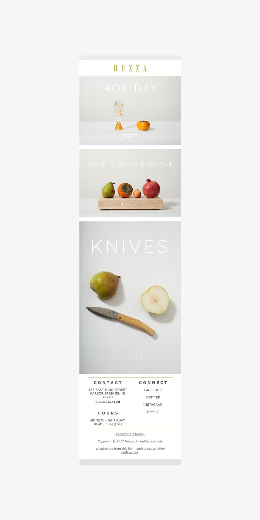 Huzza-Email-Newsletter-Graphic-Visual-Design-Portland-Oregon-PNW-Designer-Heather-Maehr.jpg
