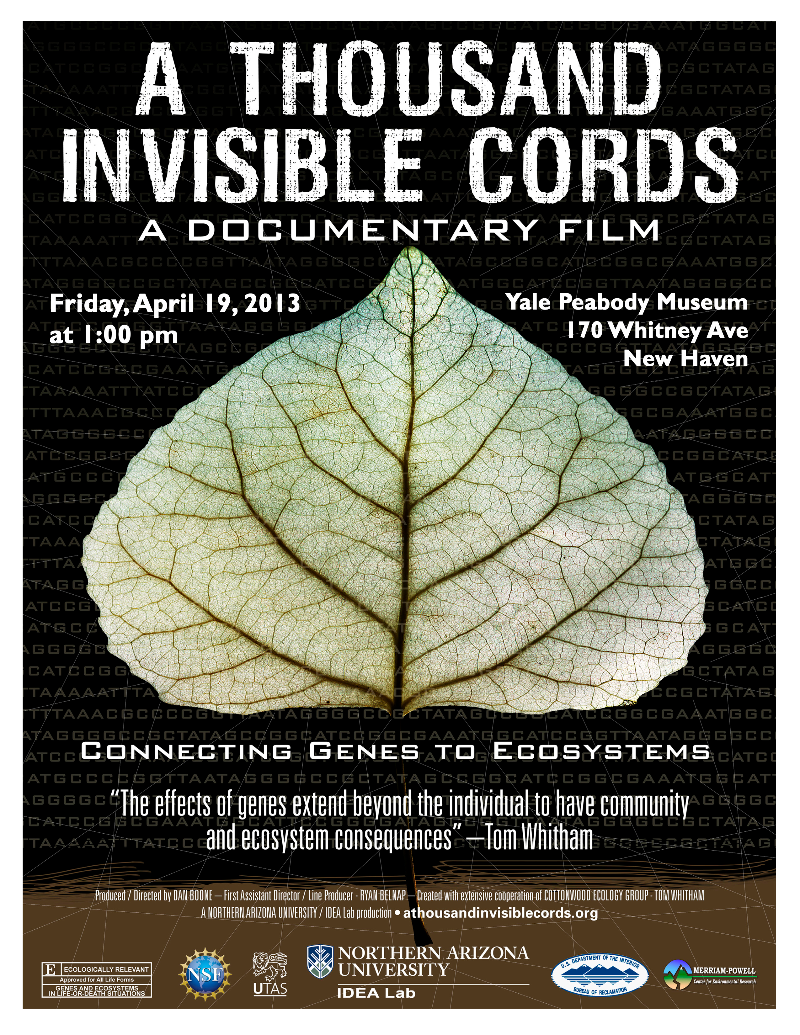 a thousand invisible cords poster Peabody.jpg