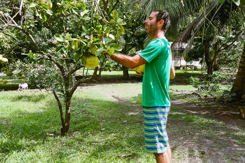 the locals let you pick the fruits from their gardens - no fruit is sold in the shops because of the natural abundance