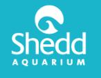 Shedd logo.png