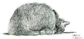 Turpentine 2.jpg