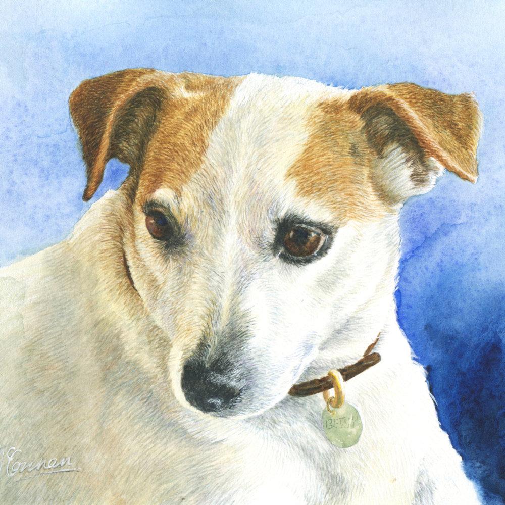 """Betsy 6"""" x 8"""" watercolour detail"""