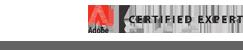 ace-website.png
