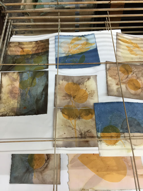 Eco prints that have been over-printed and photographed while they dry on the racks.