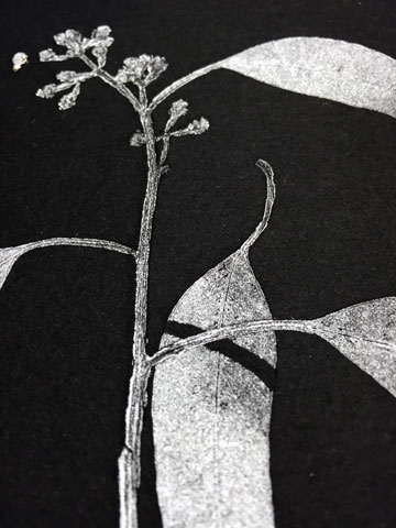 Detail, Monoprint, silver ink on black somerset paper.