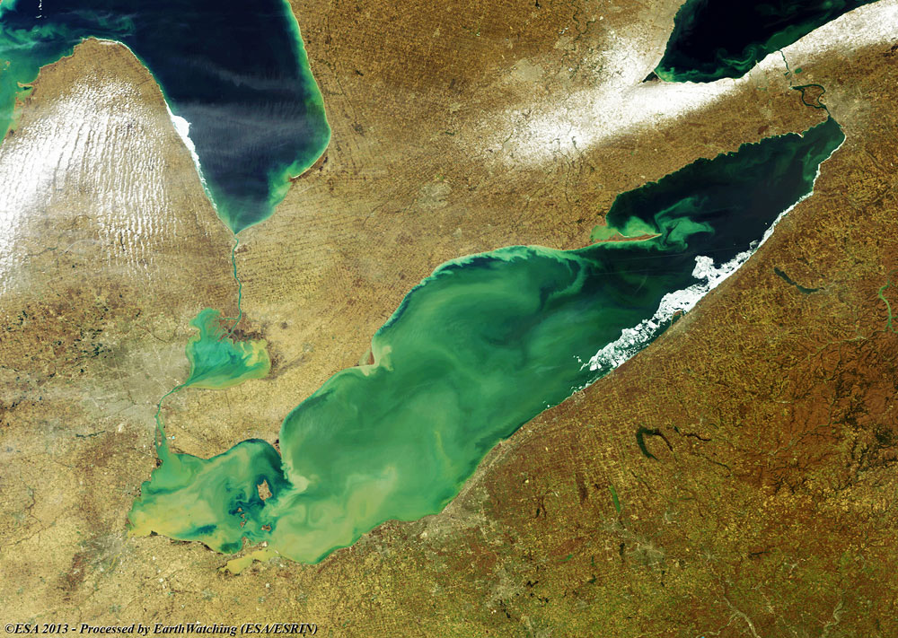 Image of Algal Blooms in Lake Erie.