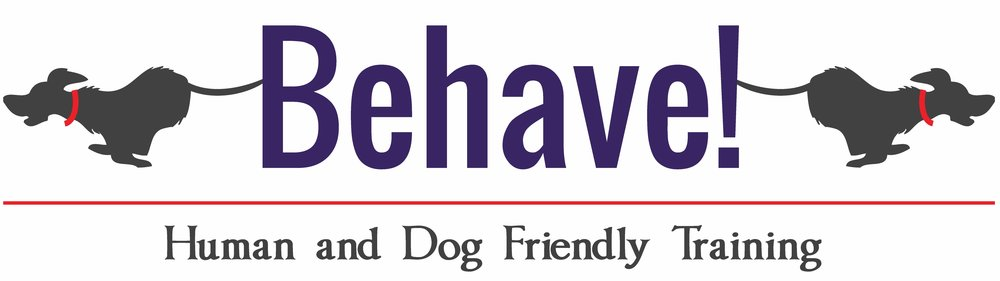 BEHAVE LOGO FINAL WHITE.jpg