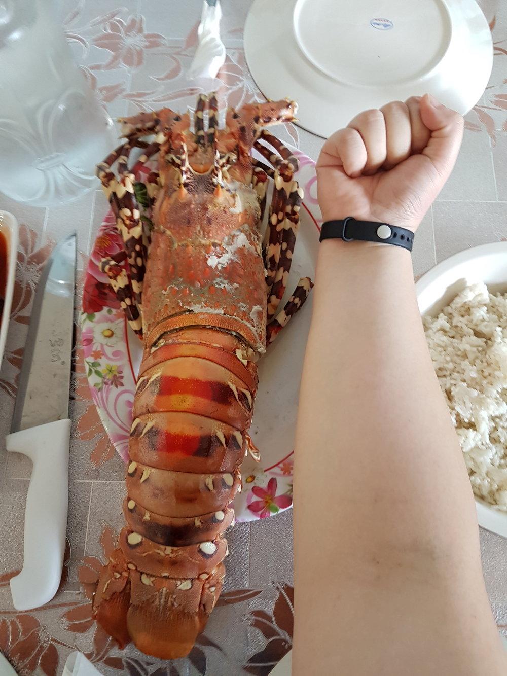 20170503_JC_Lobster.jpg