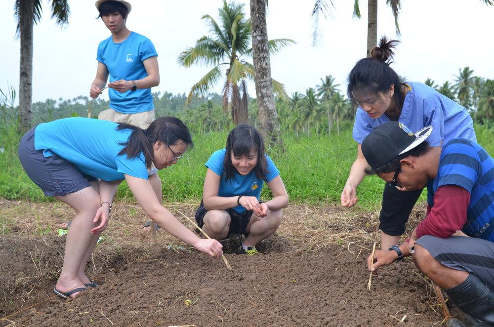 20170503_HK_Plantation_Planting-Seeds.JPG